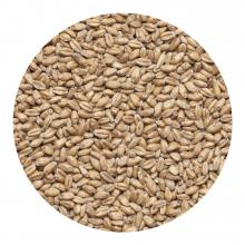 Солод пшеничный 1 кг